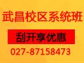 8月27日太奇武昌系统二班英语名师公开课,免费试听