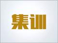 【暑期集训班】太奇2019MPAcc、MAud暑期拼搏集训班
